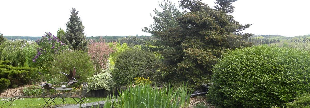 Zicht op Hallerbos vanuit tuin Plattesteen 11