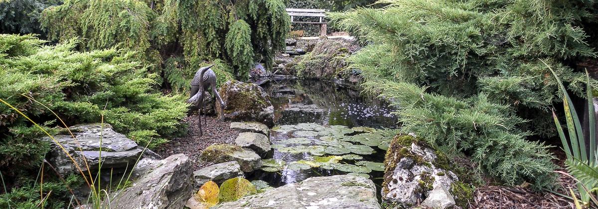 Waterpartij tuin Plattesteen 11